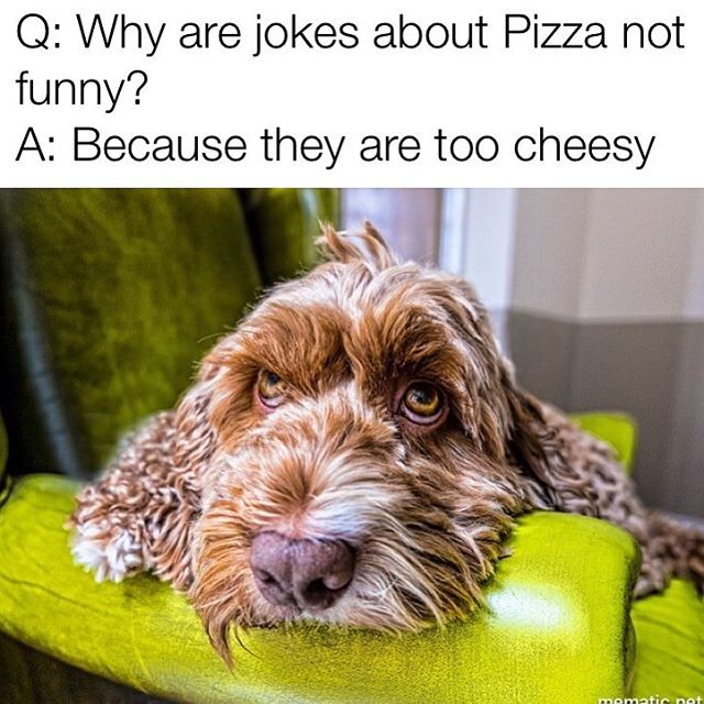 If you have met the owner you know this joke is right up his alley #Theviewpizza