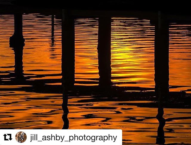 Great photo of Hardys bay jetty by @jill_ashby_photography  Check her #instagram for more great local pics.  #Theviewpizza #hardysbay #killcare #killcareheights